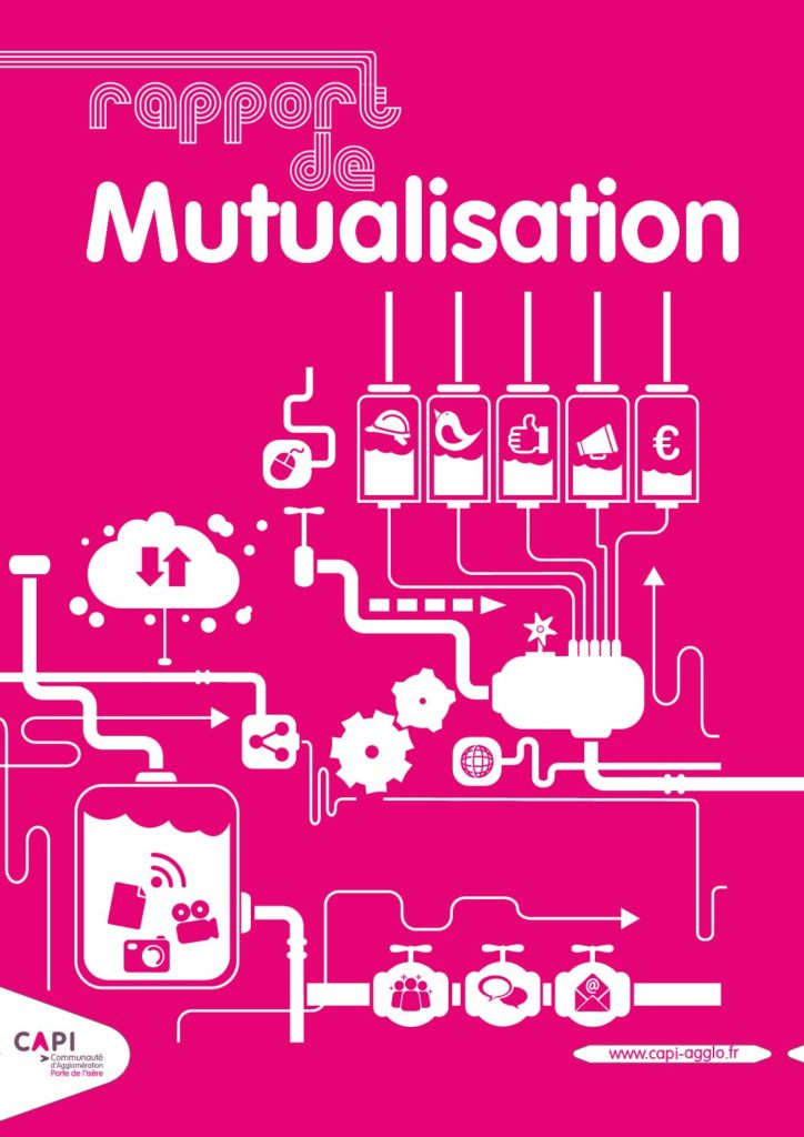 Rapport de mutualisation 2015