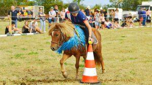 Fete_du_cheval_photo12_CAPI